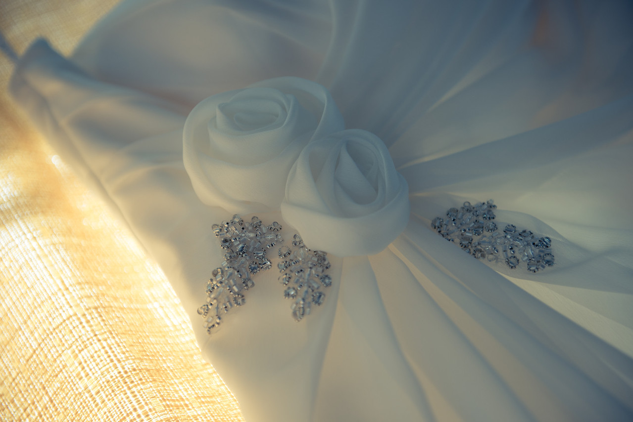 Details in the Dress